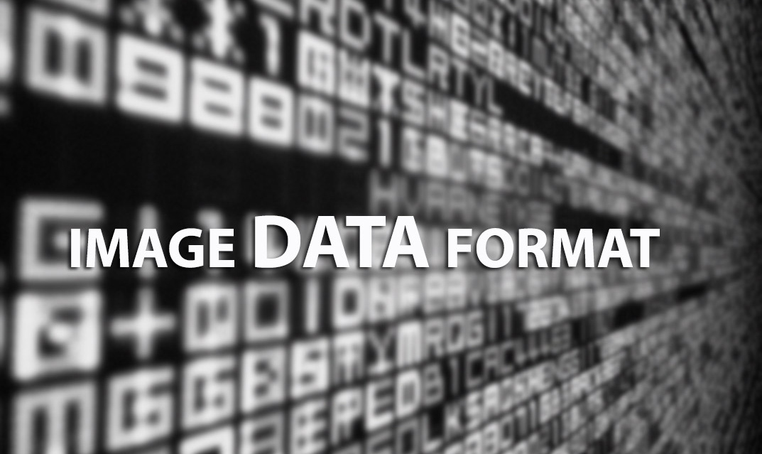 A GLOBAL VIEW OF STANDARDS FOR OPEN IMAGE DATA FORMATS AND REPOSITORIES
